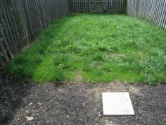 How to Get New Grass to Grow in the Heat of Summer: Seed With Potting Soil - One Project Closer