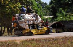 Ciudadanos de la República Centroafricana, como pueden y a bordo de lo que sea, dejan Damara, el último pueblo estratégico entre los rebeldes SELEKA y la capital Centro Africana ,Bangui. ( AFP)