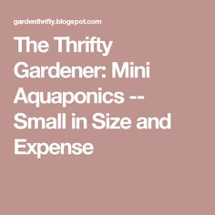 The Thrifty Gardener: Mini Aquaponics -- Small in Size and Expense