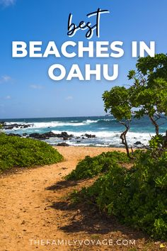 When traveling to Oahu, Waikiki is the place that most often comes to mind. But Oahu has some of Hawaii's most beautiful and diverse beaches. We've compiled a list of tips to help you complete your Hawaii bucket list. We also include where to stay, what to pack for your family trip to Oahu, and the perfect family events. Oahu Beaches, Hawaii Travel Guide, Honolulu Hawaii, Hawaii Vacation, Family Events, Lanai, Big Island, Family Travel, Places To Go