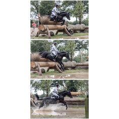 Pferdefotografie · Pferdefotograf · Horse Photography · Horse Photoshoot · Equine Photography · Equestrian Photography · Equine Photoshoot · Pferdefotos · Horse Pictures · Eventing Photography · Showjumping · Eventers Equestrain · Eventer Horses · Eventers Equestrian Cross Country · Cross Country Horse Photography · Cross Country Horse Riding · Cross Country Horse Water · Cross Country Equestrian Horse Water, Horse Pictures, Equine Photography, Horse Riding, Cross Country, Equestrian, Photoshoot, Horses, Pictures Of Horses