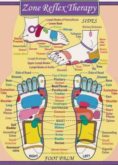 Foot Reflexology Chart | Essential Oils & Aromatherapy ... More