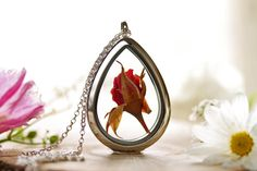 A single cherry red rose has been carefully pressed and encased in a beautiful glass locket, to create this pretty real flower necklace. Roses have had a deeply symbolic meaning since the time of the Greeks and Romans, when they were affiliated with Aphrodite and Venus, the Goddesss of love, beauty and femininity. In Victorian times, pink roses symbolizes happiness, and rosebuds to symbolize new love, making this a wonderfully thoughtful gift for Valentines day or an anniversary! This would…