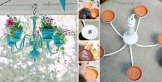 25 Creative DIY Ways To Show Off Your Plants