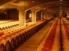 The barrel room at Robert Mondavi will have you searching for a thief! A wine thief that is...