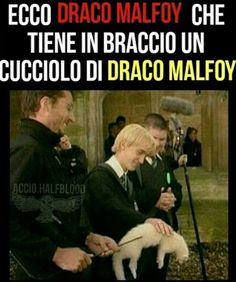 Harry Potter Tumblr, Harry Potter Anime, Harry Potter Jokes, Harry Potter Cast, Harry Potter Fandom, Harry Potter World, Harry Potter Hogwarts, Draco Malfoy, Ron And Harry