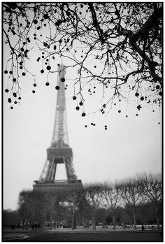 Eiffel Tower (Tour Eiffel). Paris. France. @Ernesto Oehler Fine Art Print available in ernestooehler.com