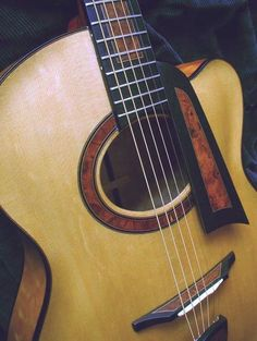 164252_293 Archtop by Otis A. Tomas