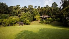 : Hang Dong District, Chiang Mai, Thailand   Gallery of Hill Lodge / SOOK Architects - 10