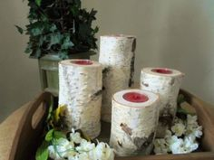 Birch Wood Candle Holder  By:- rochelle125