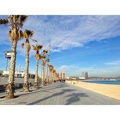 Platja de Sant Sebastià #Barcelona