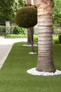 4 Ideas for gardening with artificial grass Artificial Grass Ideas Small Gardens, Artificial Turf, Front Garden Landscape, Grass Type, Shady Tree, Small Space Gardening, Gardening Books, Garden Features, Types Of Soil