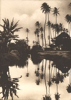 Willard E. Worden (1868-1946) - Hawaii, n.d.*