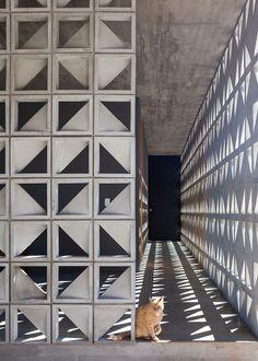Gallery of Moenda's House / Felipe Rodrigues - 3