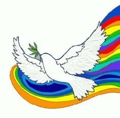 Die 44 Besten Bilder Von Colomba Della Pace Beautiful Birds Peace