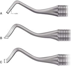 Image result for mesial and distal margin trimmer