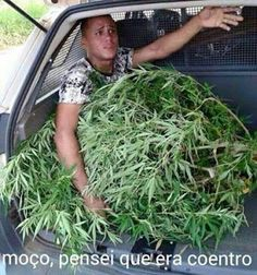 Ideas For Memes Mexicanos Chistosos Jaja Chistes Sarcastic Humor, Funny Jokes, Hilarious, Funny Photos Of People, Funny Pictures, Memes In Real Life, New Memes, Relationship Memes, School Humor