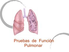 pruebas-de-funcion-pulmonar by guest0d490c via Slideshare
