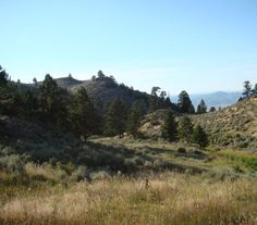 OX Ranch - This Wyoming hunting ranch for sale is completely surrounded by private land.