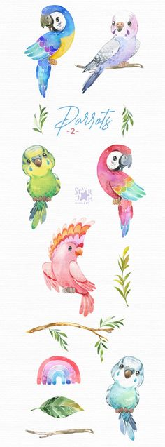 Baby Animal Drawings, Bird Drawings, Drawing Sketches, Cute Drawings Of Animals, Drawing Birds, Watercolor Animals, Watercolor Paintings, Watercolour, Parrot Drawing