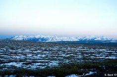 Arctic Tundra and Mountains- Alaska