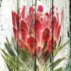 Painting Tips, Painting Techniques, Painting On Wood, Protea Art, Painted Leaves, Watercolor Flowers, Painting Flowers, Art Tutorials, Abstract Art