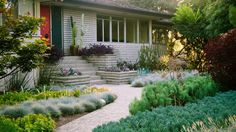 Plant a living tapestry Landscape Design, Garden Design, Desert Landscape, Patio Design, Mediterranean Plants, Drought Tolerant Landscape, Minimalist Garden, Front Yard Design, Water Wise
