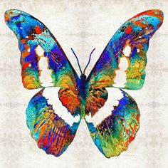 Colorful Butterfly Art PRINT from Painting Primary Colors Butterflies... ❤ liked on Polyvore featuring home, home decor, wall art, butterflies, abstract painting, colorful paintings, colorful home decor, abstract canvas wall art and abstract canvas paintings