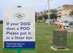 Funny pictures about Bad dog! Oh, and cool pics about Bad dog! Also, Bad dog! Funny Signs, Funny Jokes, Grammar Funny, It's Funny, Grammar Tips, Grammar Rules, Hilarious Quotes, Grammar Lessons, Funny Comedy
