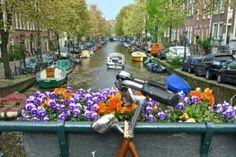 Προλαμβάνοντας την ψυχική ασθένεια μέσα από τις αστικές πολεοδομικές αλλαγές   psychologynow.gr Holland Cities, Visit Holland, Expedia Travel, Travel Deals, Holland Beach, Where To Go, Cruise, Places To Visit, Explore
