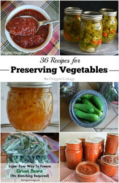 36 Recipes For Preserving Vegetables - easy techniques for freezing, drying, refrigerating & water-bath canning so you can enjoy your seasonal produce all through the year (some make great gifts, too!).