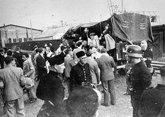 deportation of dutch jews