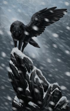 Xuicu chi tribe:dweller death:Rock collapsed on her seal:air original job:chi master angel black wolf Anime Wolf, Wolf Spirit, Spirit Animal, Fantasy Kunst, Fantasy Art, Shadow Wolf, Wolf Artwork, Fantasy Wolf, Wolf Pictures
