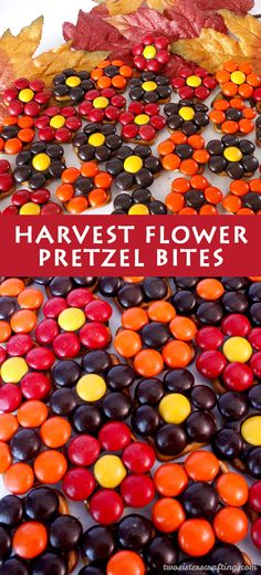 Our easy to make Harvest Flower Pretzel Bites are yummy bites of sweet and salty Thanksgiving Treat goodness. They are perfect as a little extra Thanksgiving Dessert or an anytime Fall snack. Follow us for more fun Thanksgiving Food Ideas.