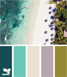 beach tones
