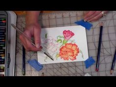how to make painters reference files and quick watercolor pencil carnations - YouTube