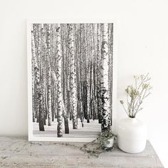 Happy with my new print from @designjungle.nl #print #forest #winterwonderland
