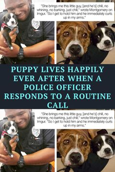 Who doesn't love a puppy? You have to be awful not to love puppies. Officer Marcus Montgomery from Florida was responding to a call from a Panhandle