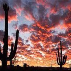 #Tucson Arizona - Beautiful!