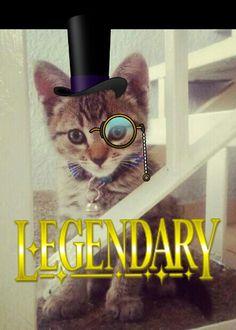 Exiquisite legendary