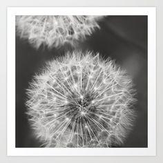 Dandelion Wishes Art Print artist botanical art print Dandelion Wish, Botanical Art, Art Prints, Artwork, Flowers, Plants, Photography, Beautiful, Artists