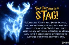 This is more proof that I am the female version of Harry Potter aka Harriet Potter. I took Zimbio's Patronus quiz and got Stag! Harry Potter Girl, Harry Potter Quiz, Harry Potter Houses, Harry Potter Theme, Harry Potter Characters, What Is A Patronus, Pottermore Patronus Quiz, Fox Patronus, Movies