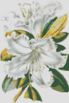 Rhododendron Flower Cross Stitch Pattern