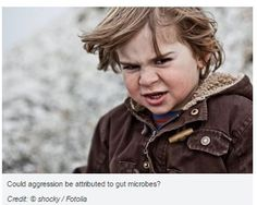 Toddler Temperament Could be Influenced by Different Types of Gut Bacteria-pinned by @PediaStaff – Please Visit ht.ly/63sNtfor all our pediatric therapy pins