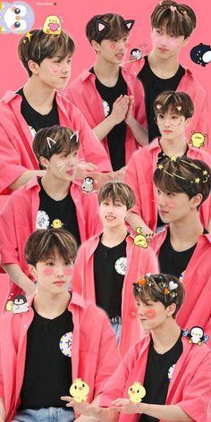Wallpapers Kpop, Cute Wallpapers, Jaehyun Nct, Nct Taeyong, Nct Dream, Nct 127, K Pop, Park Jisung Nct, All Meme