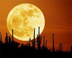 The super moon, May 6, 2012