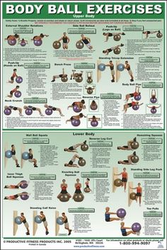 Upper/Lower Body Chart