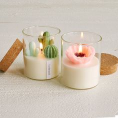Terrarium Candle Cactus Candles Flower Candles funnygifts Zoe Tang s hand-poured scented miniature cactus and poppy candles are meticulously detailed super adorable and smell like heaven Aromatherapy Candles, Scented Candles, Candle Jars, Perfumed Candles, Beeswax Candles, Candle Holders, Candle Set, Candle Gifts, Incense Holder