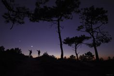 the outdoors at night. Black Silhouette, Purple, Blue, December, Celestial, Sunset, Night, Silhouettes, Outdoors