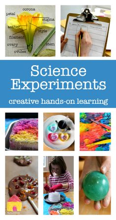 Hand-on and easy science experiments for kids to do at home or in class :: easy science fair projects :: homeschool science projects